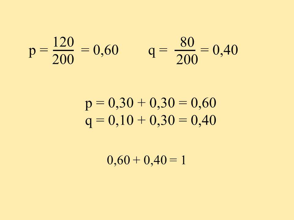 p = = 0,60 q = = 0,40 p = 0,30 + 0,30 = 0,60 q = 0,10 + 0,30 = 0,40 0,60 + 0,40 = 1 80 200 120 200