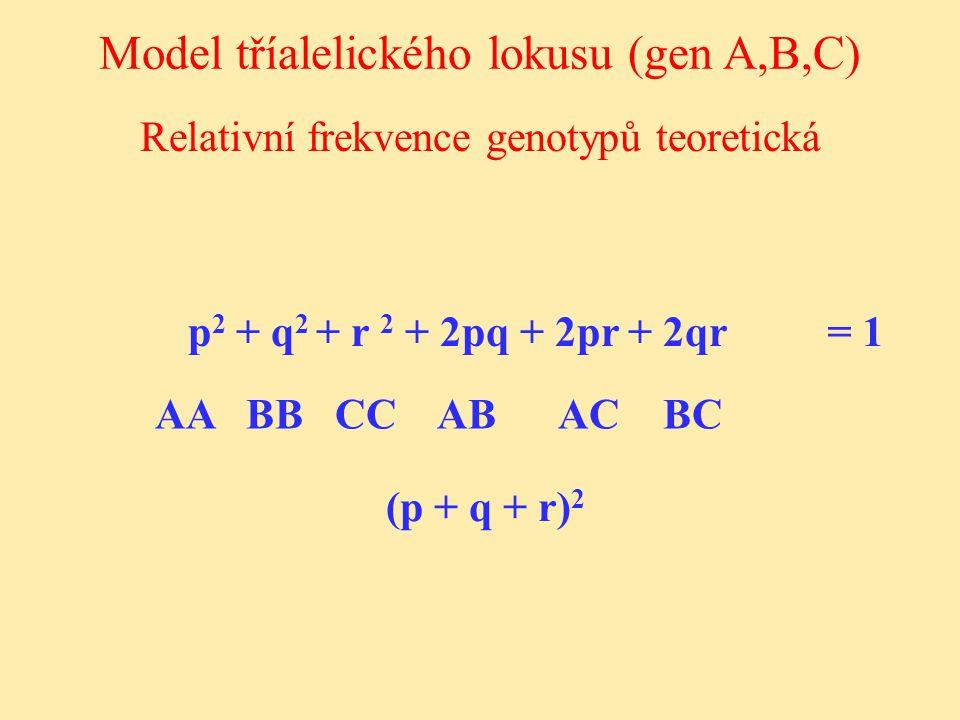 Relativní frekvence genotypů teoretická Model tříalelického lokusu (gen A,B,C) p 2 + q 2 + r 2 + 2pq + 2pr + 2qr AA BB CC AB AC BC (p + q + r) 2 = 1