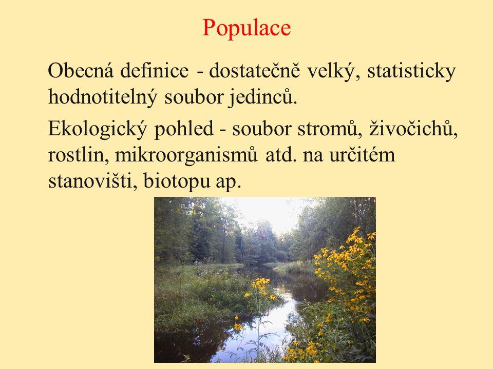 Populace Obecná definice - dostatečně velký, statisticky hodnotitelný soubor jedinců. Ekologický pohled - soubor stromů, živočichů, rostlin, mikroorga
