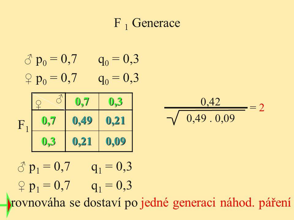 0,70,3 0,70,490,21 0,30,210,09 ♀ ♂ 0,42 0,49. 0,09 = 2 rovnováha se dostaví po jedné generaci náhod. páření F1F1 F 1 Generace ♂ p 0 = 0,7 q 0 = 0,3 ♀