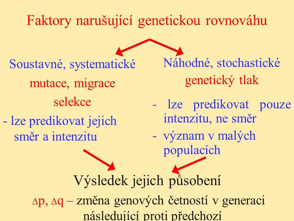 Faktory narušující genetickou rovnováhu Soustavné, systematické mutace, migrace selekce - lze predikovat jejich směr a intenzitu Náhodné, stochastické
