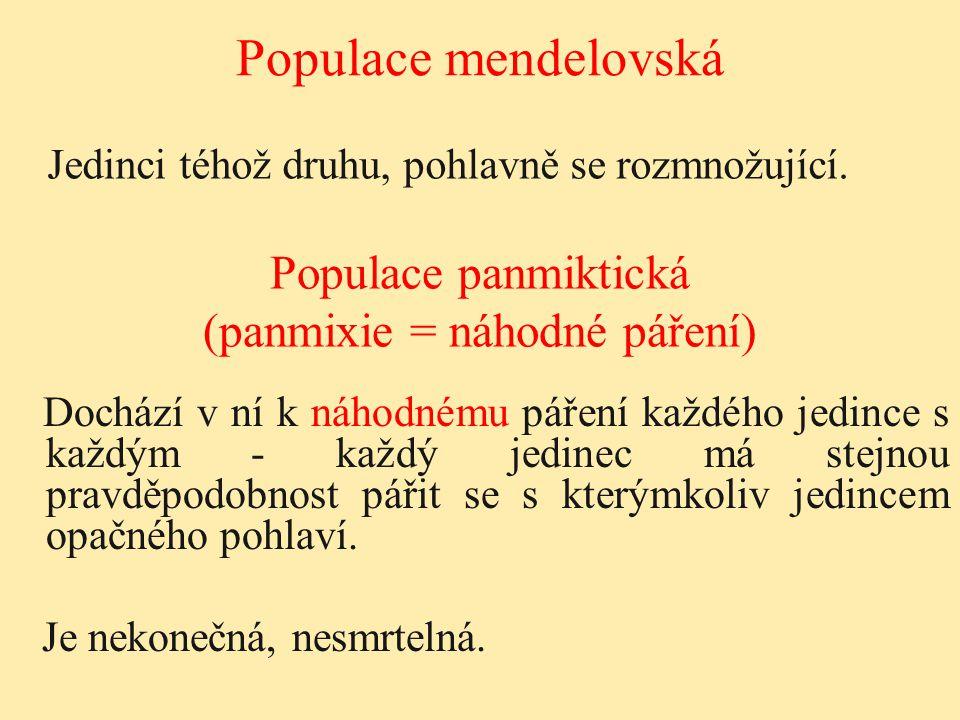 Genetika populací Rovnováha populací
