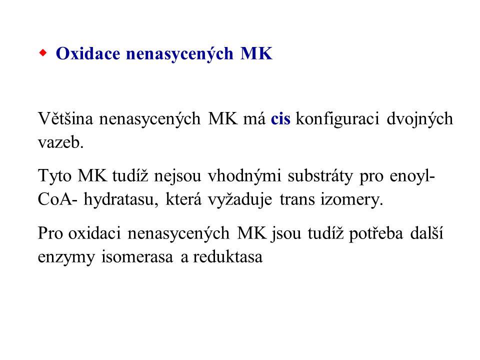 Oxidace nenasycených MK Většina nenasycených MK má cis konfiguraci dvojných vazeb. Tyto MK tudíž nejsou vhodnými substráty pro enoyl- CoA- hydratasu