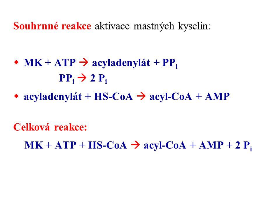 Souhrnné reakce aktivace mastných kyselin:  MK + ATP  acyladenylát + PP i PP i  2 P i  acyladenylát + HS-CoA  acyl-CoA + AMP Celková reakce: MK +