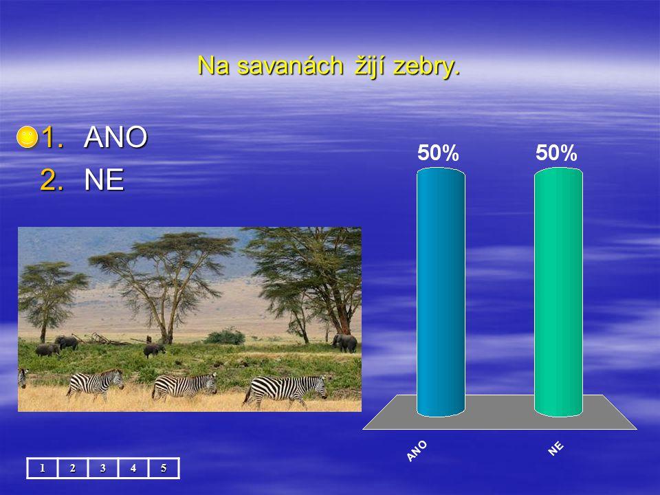 Na savanách žijí zebry. 12345 1.ANO 2.NE