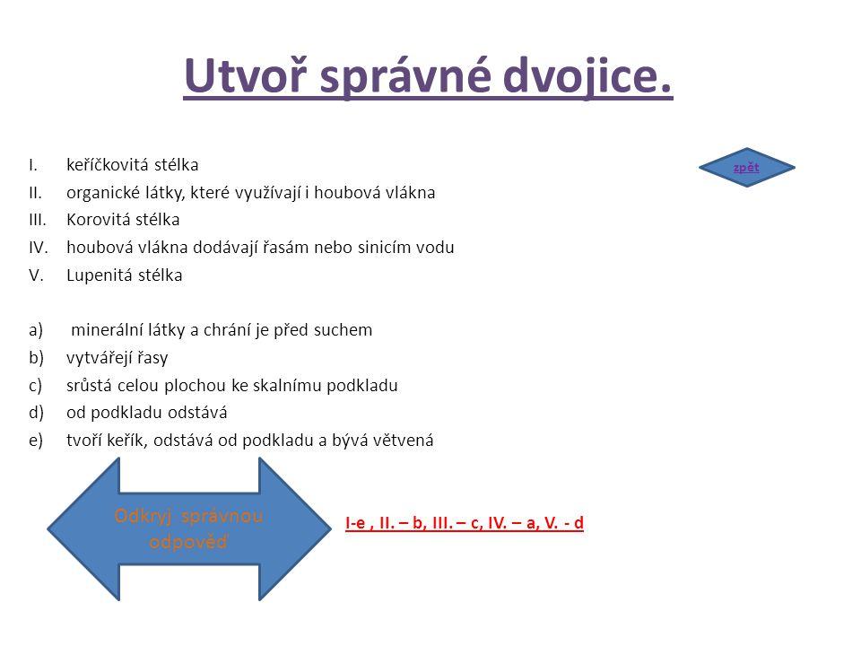 Utvoř správné dvojice. I.keříčkovitá stélka II.organické látky, které využívají i houbová vlákna III.Korovitá stélka IV.houbová vlákna dodávají řasám