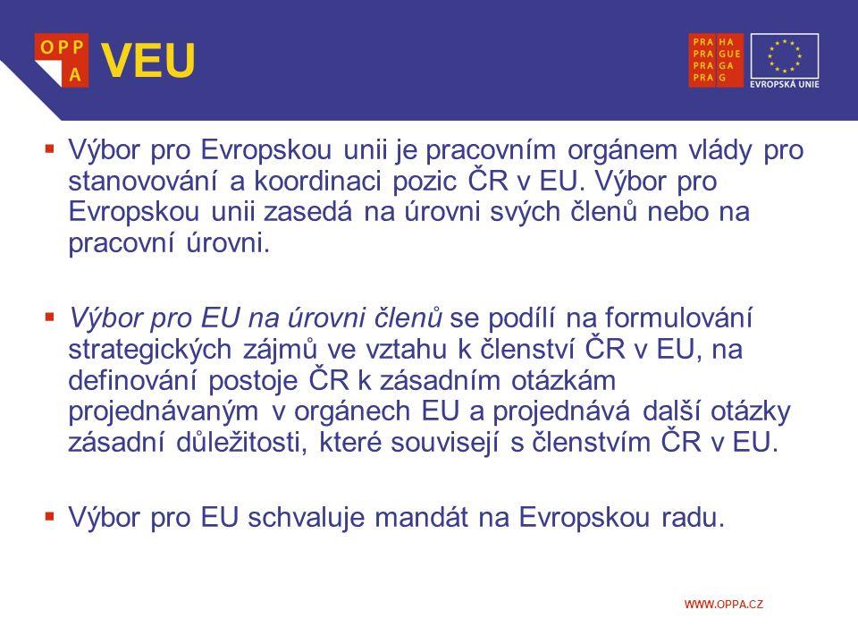WWW.OPPA.CZ VEU  Výbor pro Evropskou unii je pracovním orgánem vlády pro stanovování a koordinaci pozic ČR v EU.