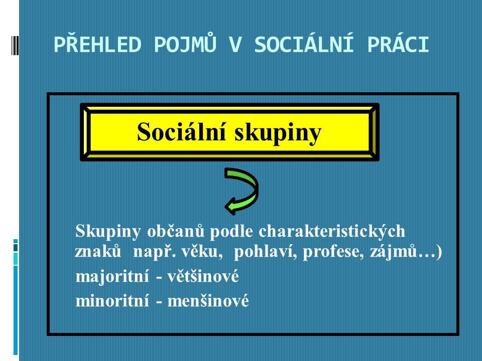 PŘEHLED POJMŮ V SOCIÁLNÍ PRÁCI Skupiny občanů podle charakteristických znaků např.