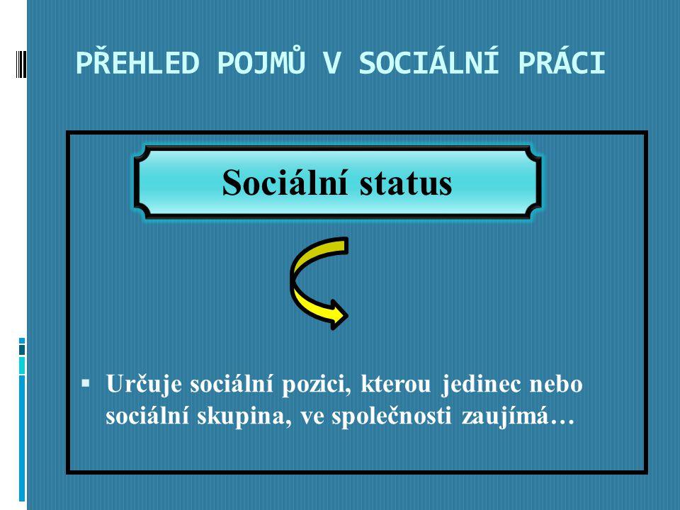 PŘEHLED POJMŮ V SOCIÁLNÍ PRÁCI  Určuje sociální pozici, kterou jedinec nebo sociální skupina, ve společnosti zaujímá… Sociální status