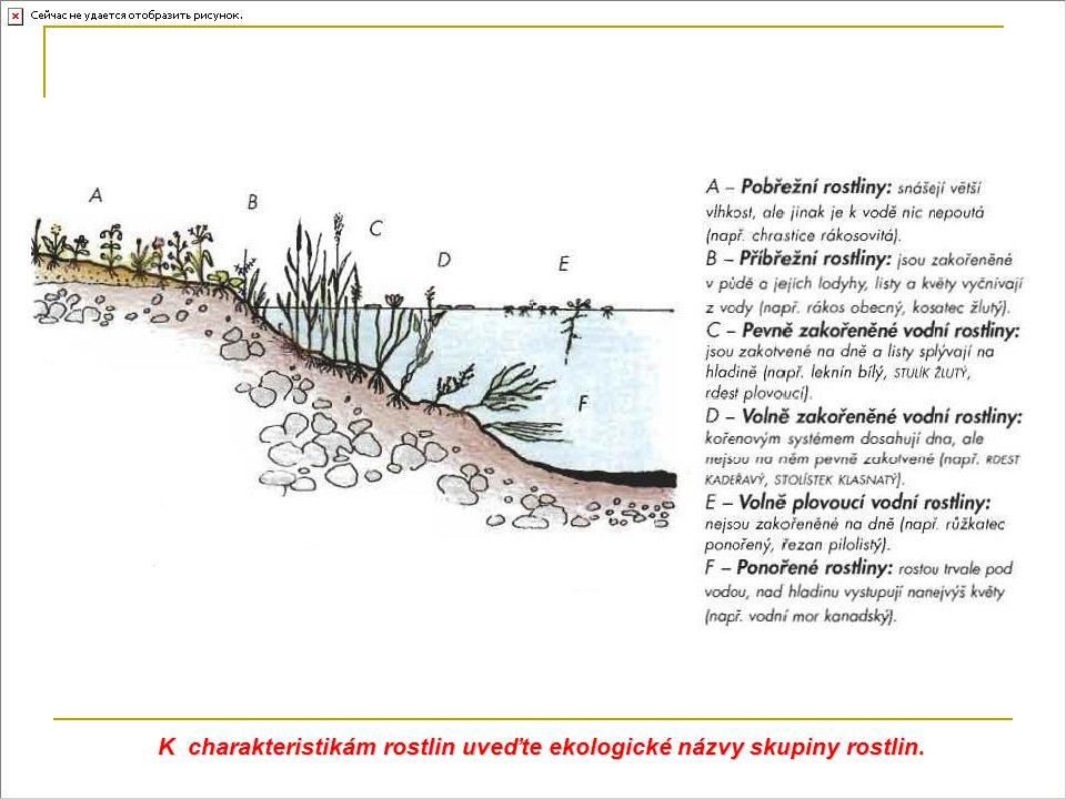 K charakteristikám rostlin uveďte ekologické názvy skupiny rostlin.