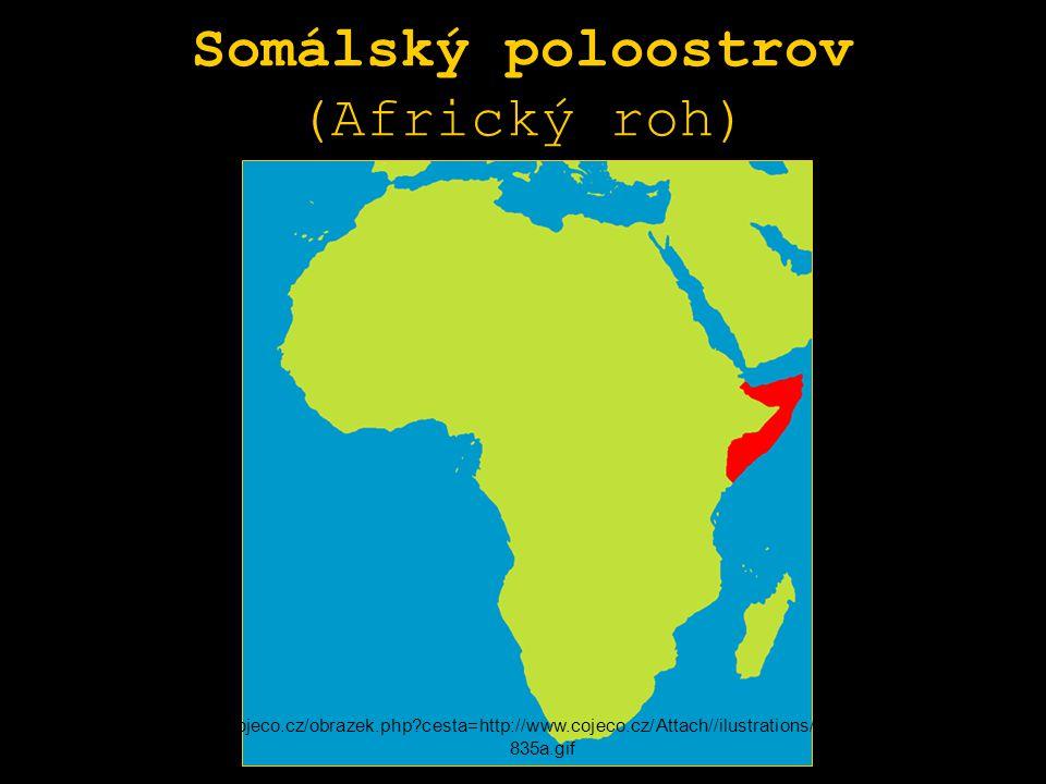 Somálský poloostrov (Africký roh) http://www.cojeco.cz/obrazek.php?cesta=http://www.cojeco.cz/Attach//ilustrations/cpos393770d73 835a.gif