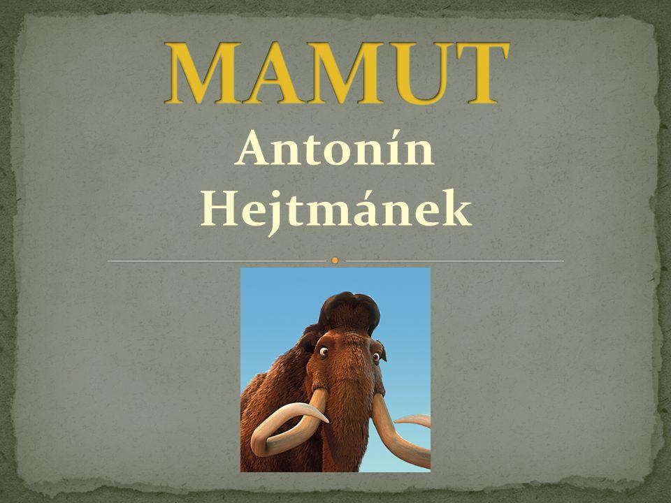 Mamut je vyhynulý rod z čeledi slonovitých a řádu chobotnatců.