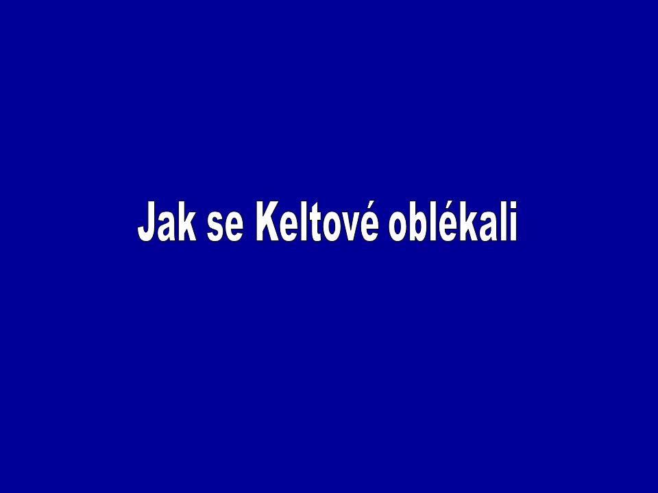 Bednaříková, J.a kol.: Dějepis – Pravěk a starověk, Nová škola, Brno 2007 Čižmářová, J.