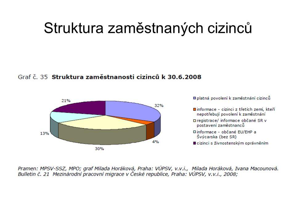 Struktura zaměstnaných cizinců