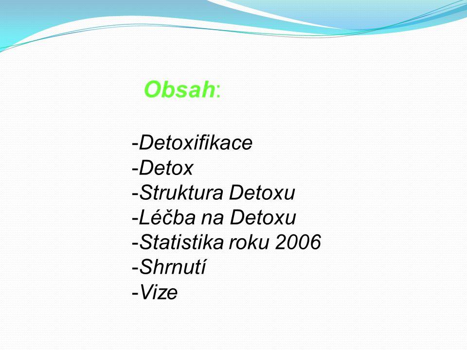 Obsah: -Detoxifikace -Detox -Struktura Detoxu -Léčba na Detoxu -Statistika roku 2006 -Shrnutí -Vize