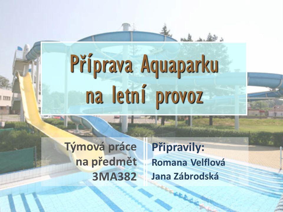 Připravily: Romana Velflová Jana Zábrodská Týmová práce na předmět 3MA382 Příprava Aquaparku na letní provoz