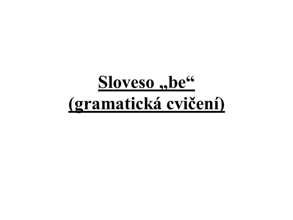 """Sloveso """"be"""" (gramatická cvičení)"""