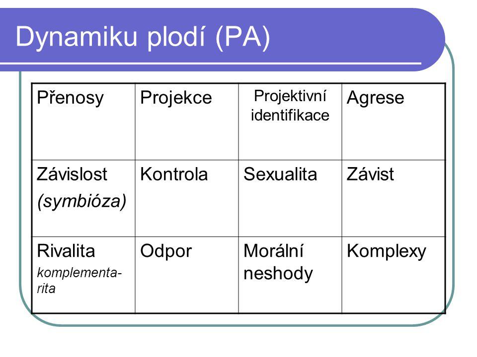 Dynamiku plodí (PA) PřenosyProjekce Projektivní identifikace Agrese Závislost (symbióza) KontrolaSexualitaZávist Rivalita komplementa- rita OdporMorál