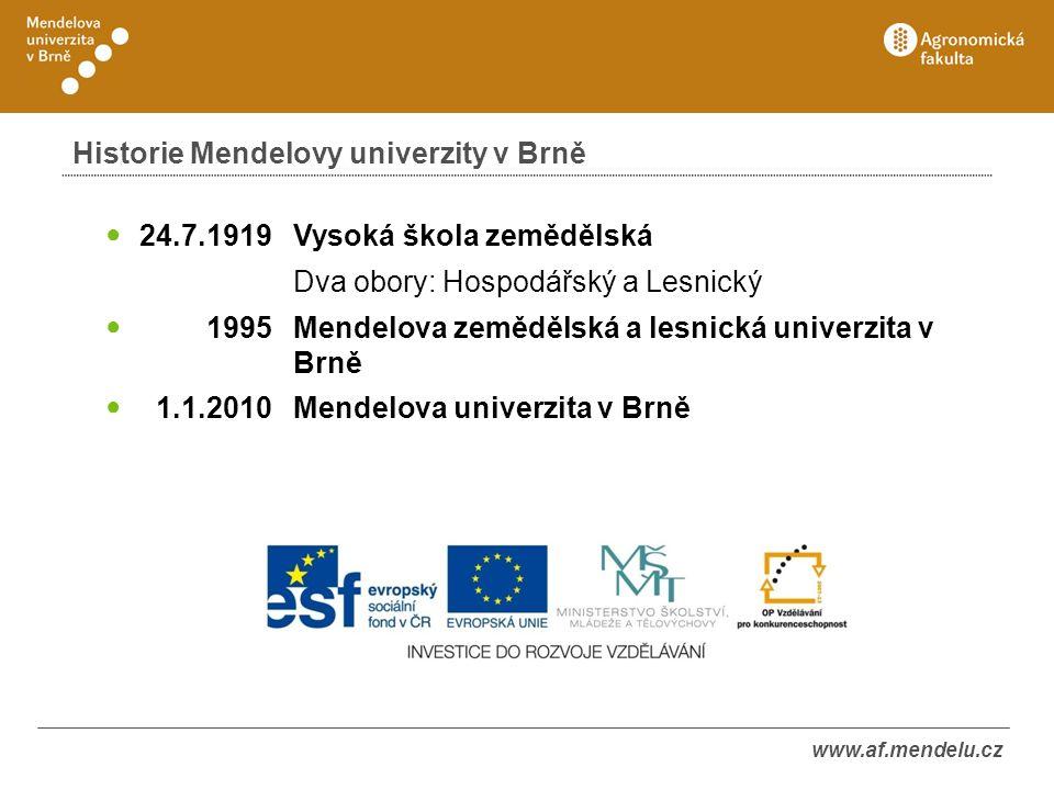 www.af.mendelu.cz Struktura Mendelovy univerzity v Brně
