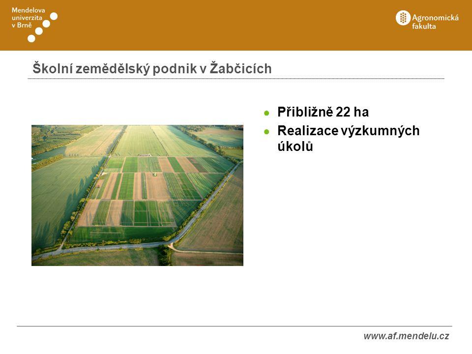www.af.mendelu.cz Školní zemědělský podnik v Žabčicích ● Přibližně 22 ha ● Realizace výzkumných úkolů