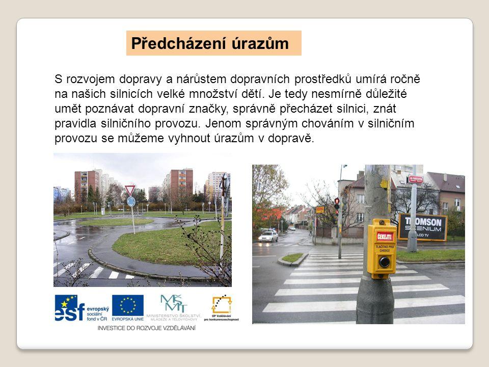 S rozvojem dopravy a nárůstem dopravních prostředků umírá ročně na našich silnicích velké množství dětí.