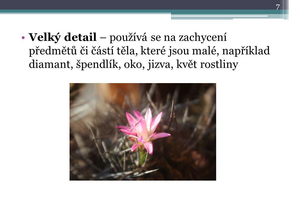 Velký detail – používá se na zachycení předmětů či částí těla, které jsou malé, například diamant, špendlík, oko, jizva, květ rostliny 7