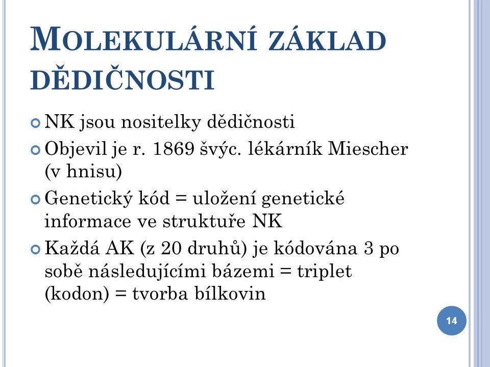 M OLEKULÁRNÍ ZÁKLAD DĚDIČNOSTI NK jsou nositelky dědičnosti Objevil je r.