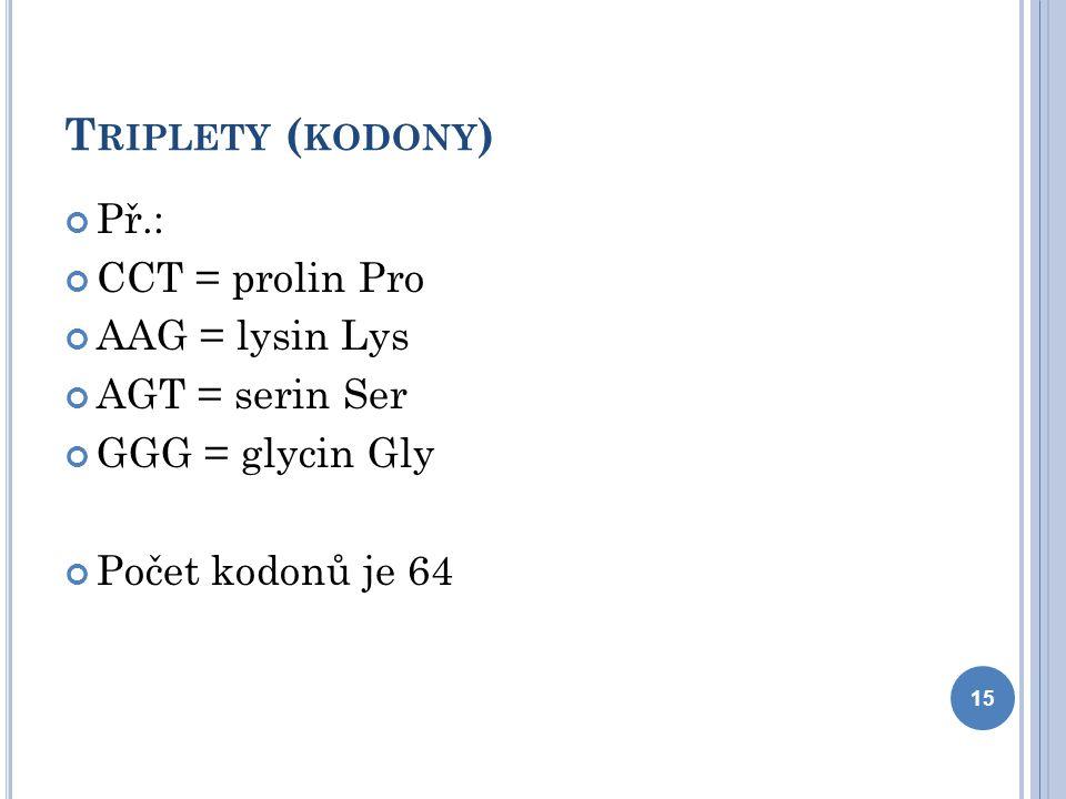 T RIPLETY ( KODONY ) Př.: CCT = prolin Pro AAG = lysin Lys AGT = serin Ser GGG = glycin Gly Počet kodonů je 64 15