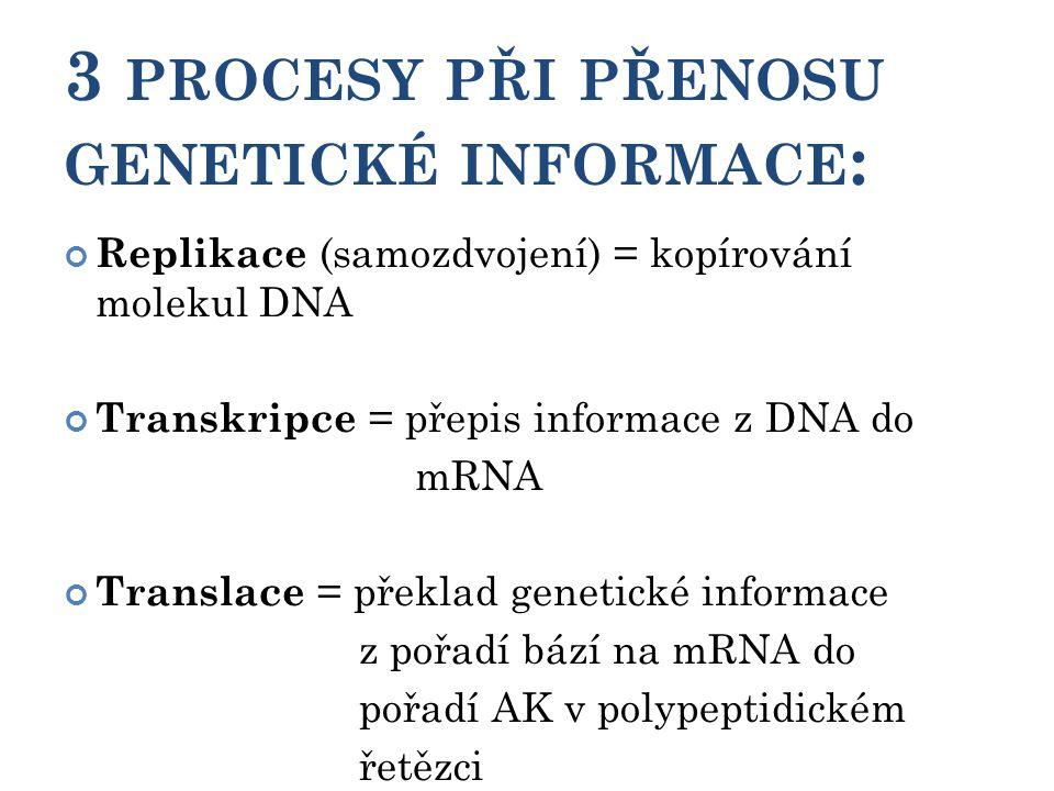 3 PROCESY PŘI PŘENOSU GENETICKÉ INFORMACE : Replikace (samozdvojení) = kopírování molekul DNA Transkripce = přepis informace z DNA do mRNA Translace = překlad genetické informace z pořadí bází na mRNA do pořadí AK v polypeptidickém řetězci 16