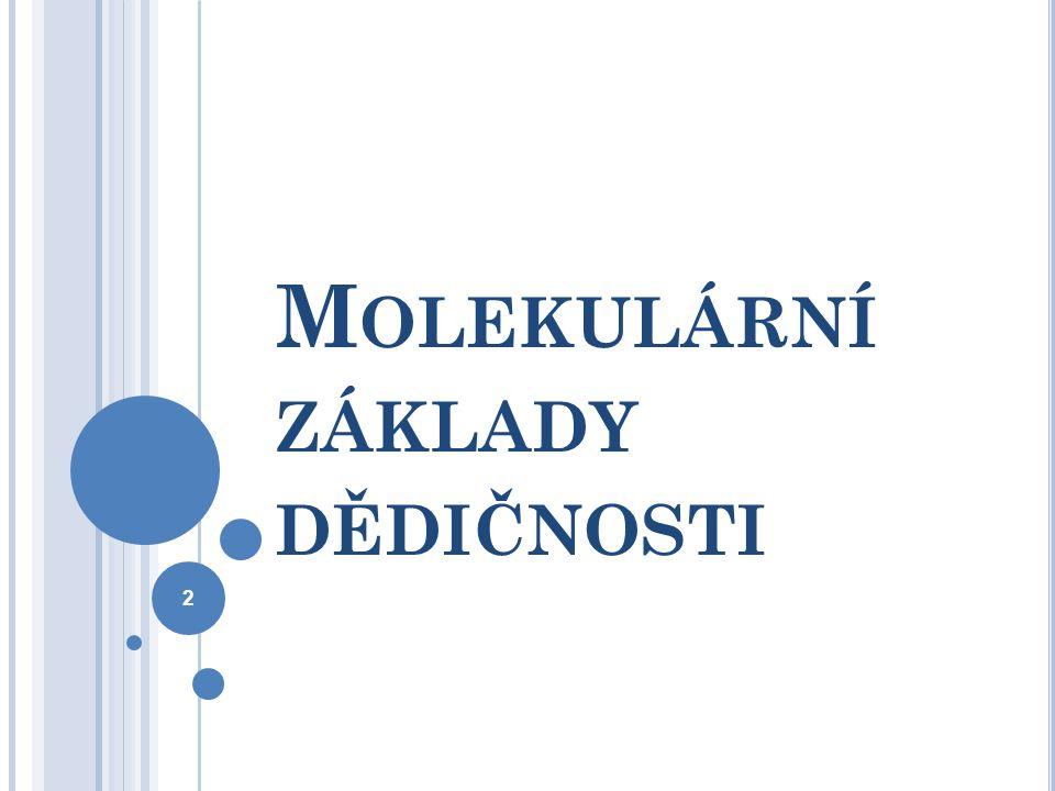 M OLEKULÁRNÍ ZÁKLADY DĚDIČNOSTI 2