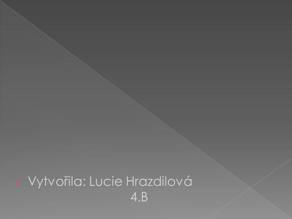 Vytvořila: Lucie Hrazdilová 4.B