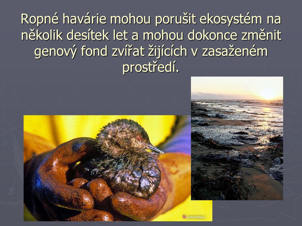 Ropné havárie mohou porušit ekosystém na několik desítek let a mohou dokonce změnit genový fond zvířat žijících v zasaženém prostředí.