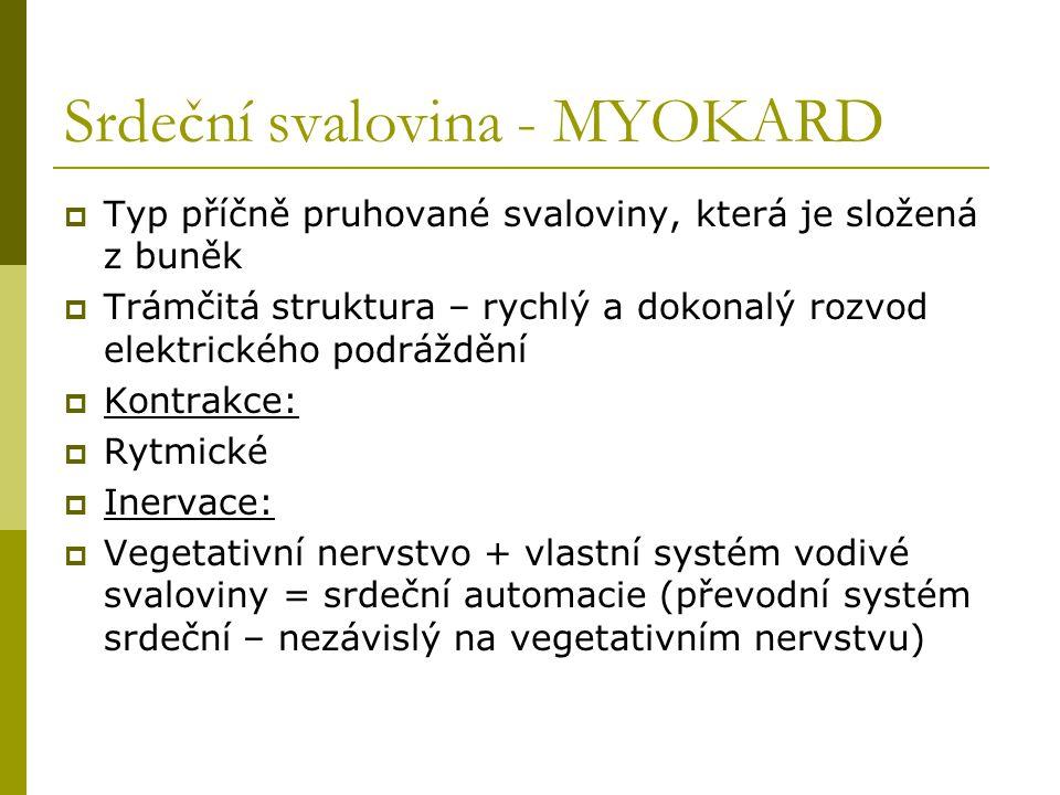 Srdeční svalovina - MYOKARD  Typ příčně pruhované svaloviny, která je složená z buněk  Trámčitá struktura – rychlý a dokonalý rozvod elektrického po
