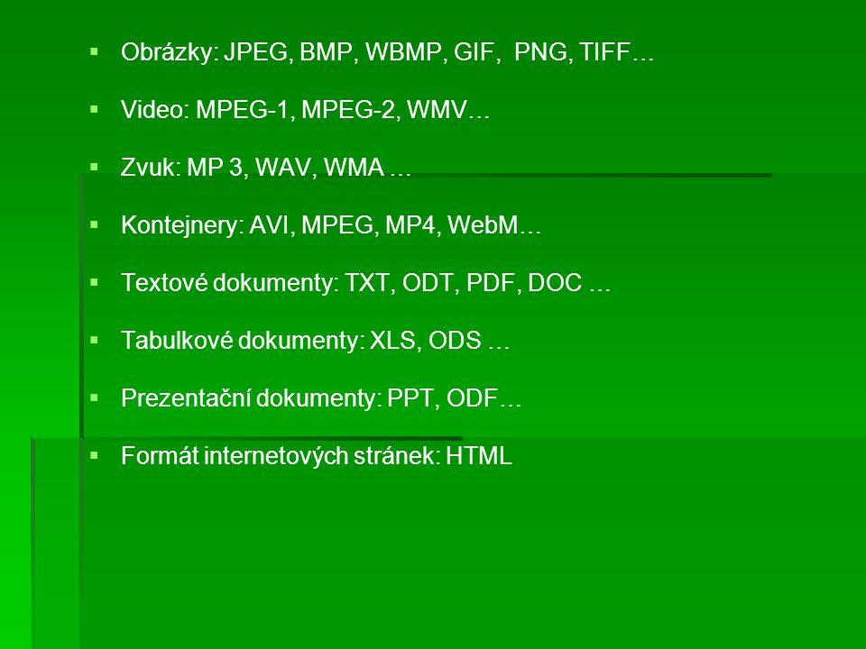   Obrázky: JPEG, BMP, WBMP, GIF, PNG, TIFF…   Video: MPEG-1, MPEG-2, WMV…   Zvuk: MP 3, WAV, WMA …   Kontejnery: AVI, MPEG, MP4, WebM…   Textové dokumenty: TXT, ODT, PDF, DOC …   Tabulkové dokumenty: XLS, ODS …   Prezentační dokumenty: PPT, ODF…   Formát internetových stránek: HTML