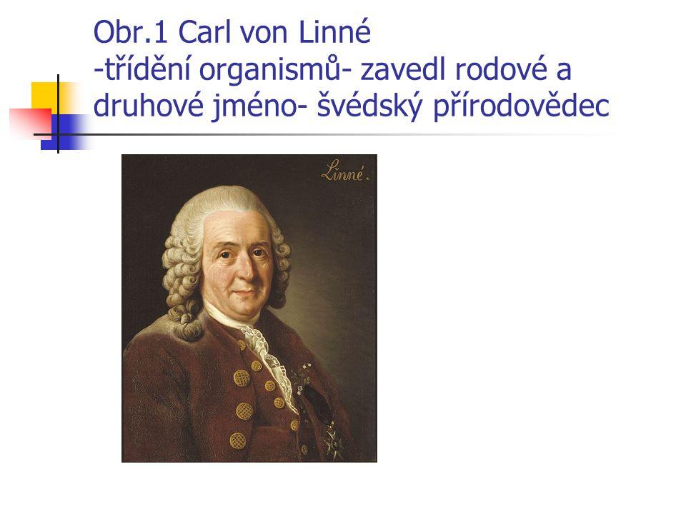 Obr.1 Carl von Linné -třídění organismů- zavedl rodové a druhové jméno- švédský přírodovědec
