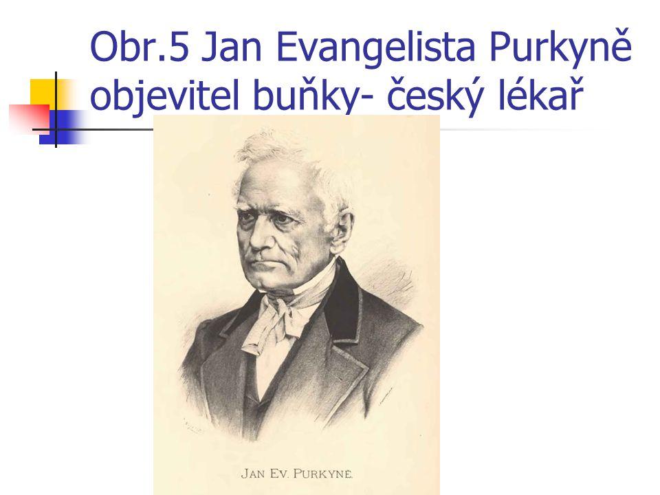 Obr.5 Jan Evangelista Purkyně objevitel buňky- český lékař