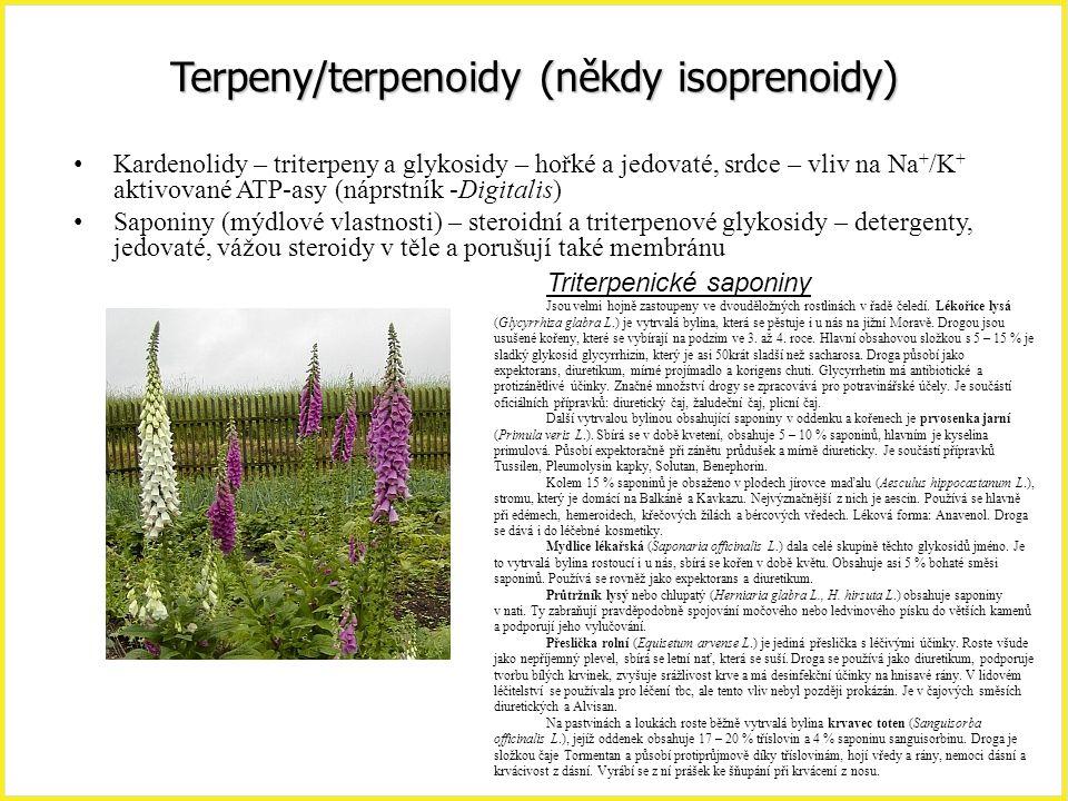 Terpeny/terpenoidy (někdy isoprenoidy) Kardenolidy – triterpeny a glykosidy – hořké a jedovaté, srdce – vliv na Na + /K + aktivované ATP-asy (náprstní