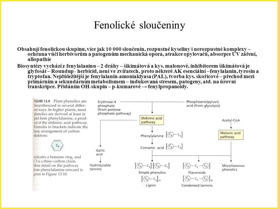 Fenolické sloučeniny Obsahují fenolickou skupinu, více jak 10 000 sloučenin, rozpustné kyseliny i nerozpustné komplexy – ochrana vůči herbivorům a pat