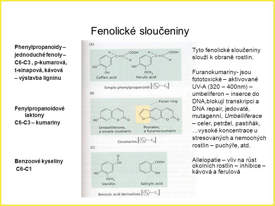 Fenolické sloučeniny Phenylpropanoidy – jednoduché fenoly – C6-C3, p-kumarová, t-sinapová, kávová – výstavba ligninu Fenylpropanoidové laktony C6-C3 –