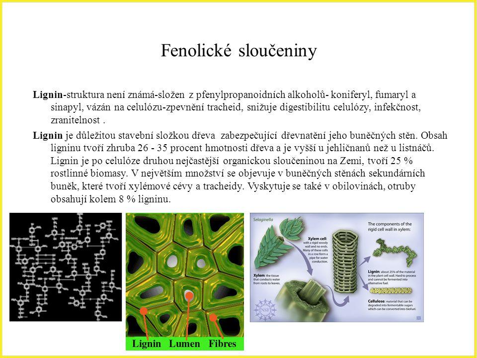 Fenolické sloučeniny Lignin-struktura není známá-složen z pfenylpropanoidních alkoholů- koniferyl, fumaryl a sinapyl, vázán na celulózu-zpevnění trach