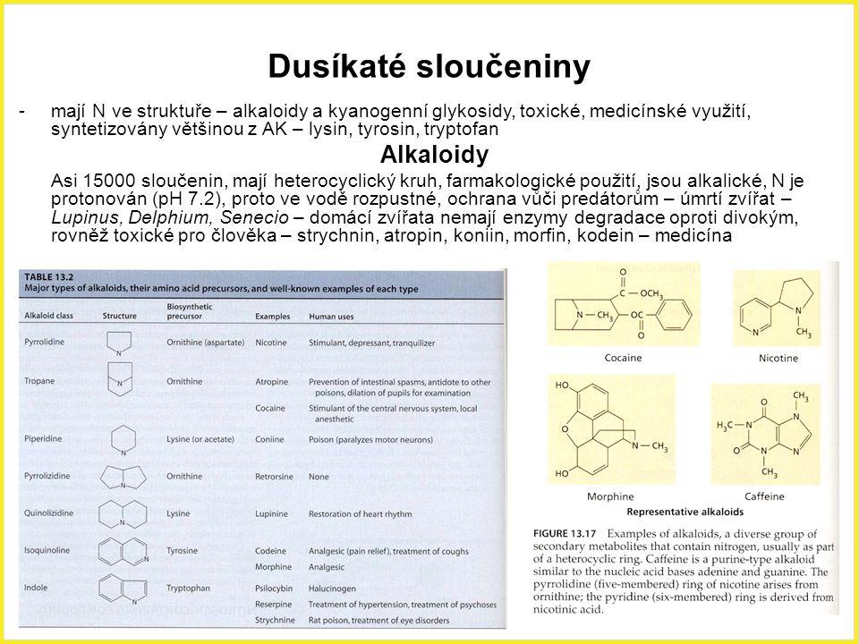 Dusíkaté sloučeniny -mají N ve struktuře – alkaloidy a kyanogenní glykosidy, toxické, medicínské využití, syntetizovány většinou z AK – lysin, tyrosin