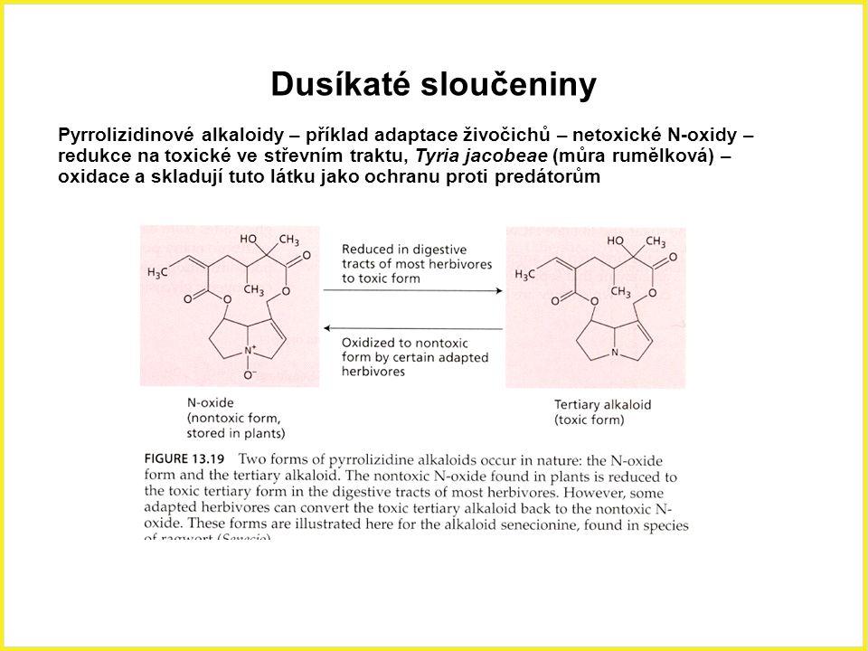 Dusíkaté sloučeniny Pyrrolizidinové alkaloidy – příklad adaptace živočichů – netoxické N-oxidy – redukce na toxické ve střevním traktu, Tyria jacobeae