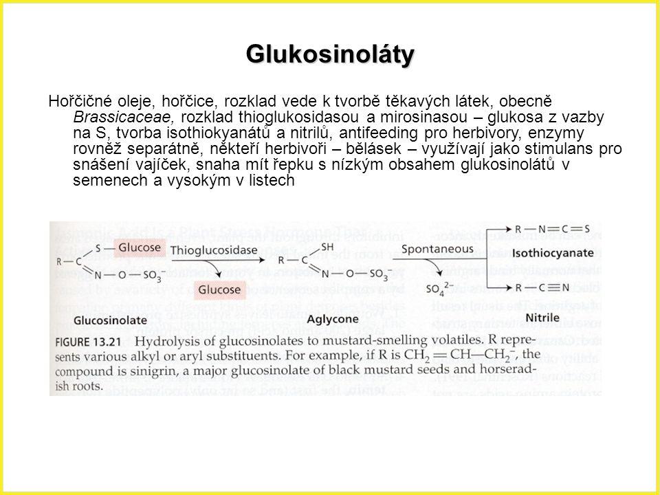 Glukosinoláty Hořčičné oleje, hořčice, rozklad vede k tvorbě těkavých látek, obecně Brassicaceae, rozklad thioglukosidasou a mirosinasou – glukosa z v