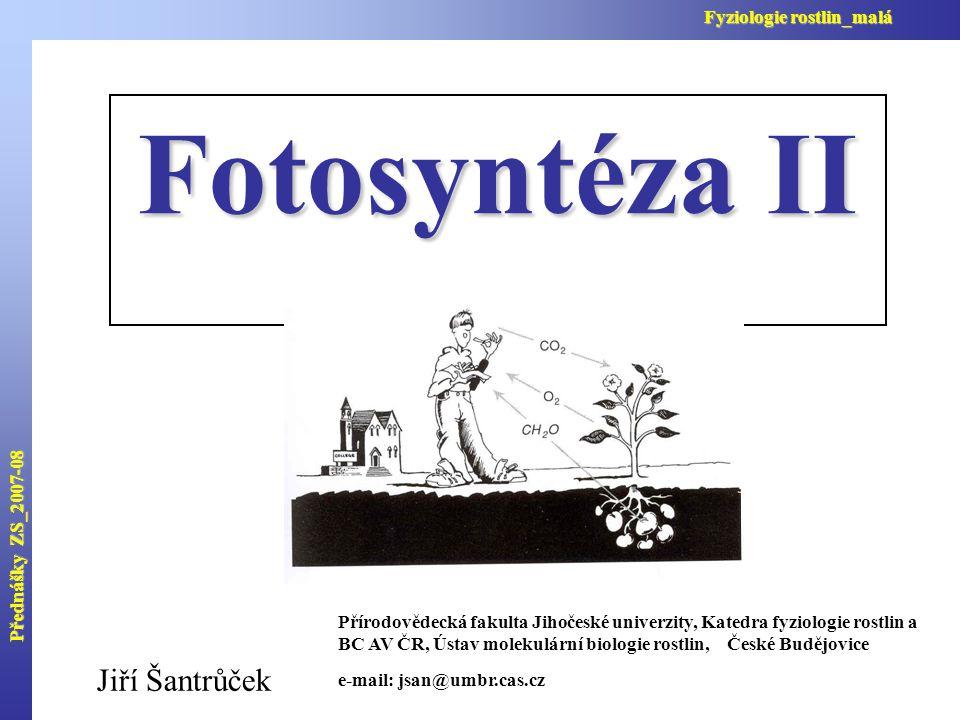 Přednášky ZS_2007-08 Fyziologie rostlin_malá Vstupy a výstupy Calvinova cyklu a jejich stechiometrie