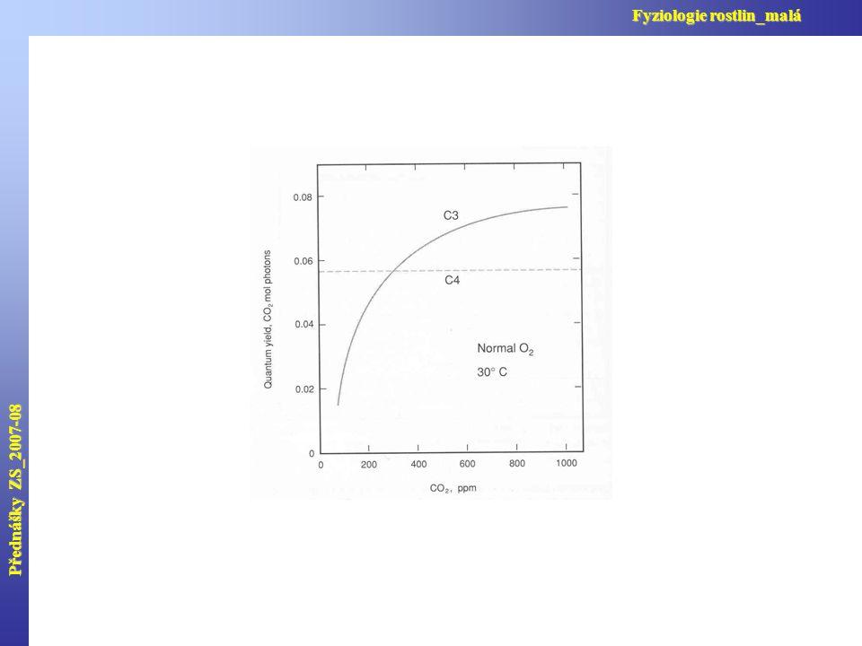 Přednášky ZS_2007-08 Fyziologie rostlin_malá
