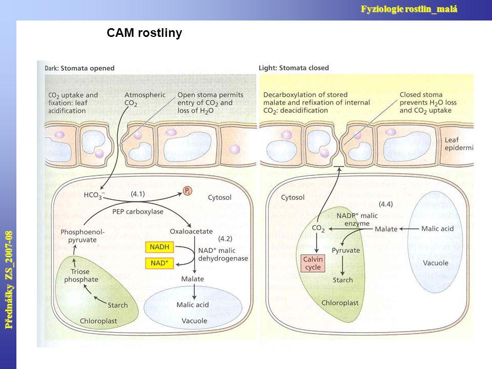 Přednášky ZS_2007-08 Fyziologie rostlin_malá CAM rostliny