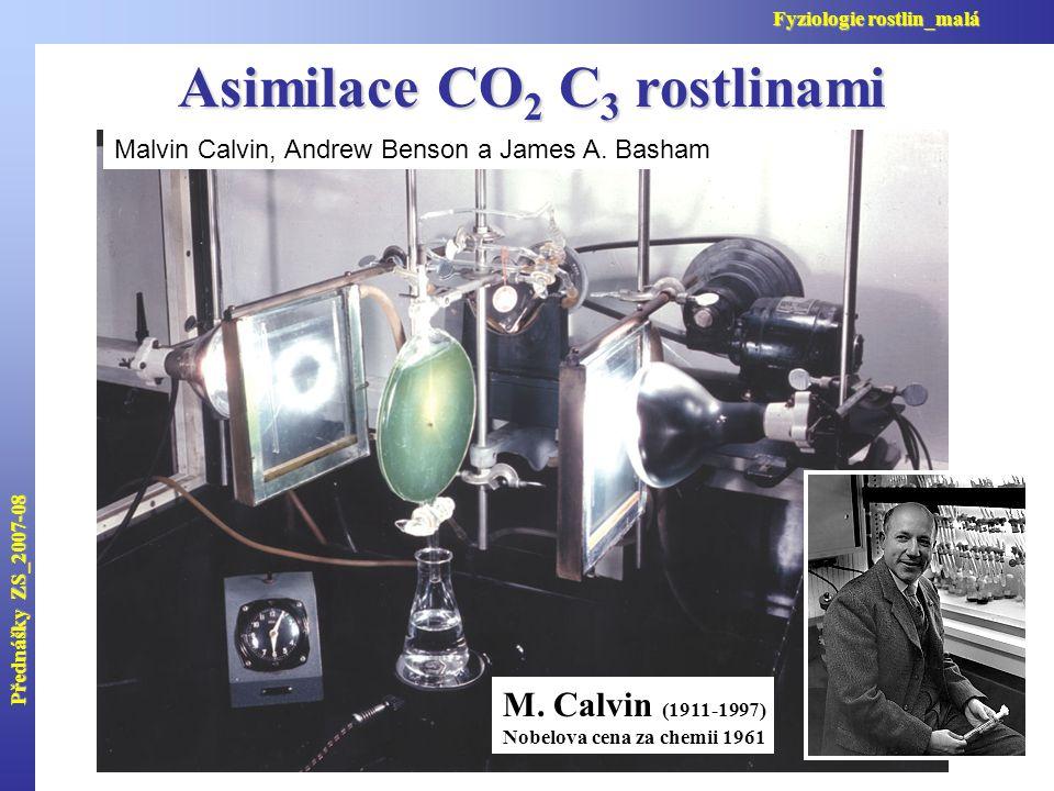 První produkty asimilace CO 2 První produkty oxygenace Přednášky ZS_2007-08 Fyziologie rostlin_malá