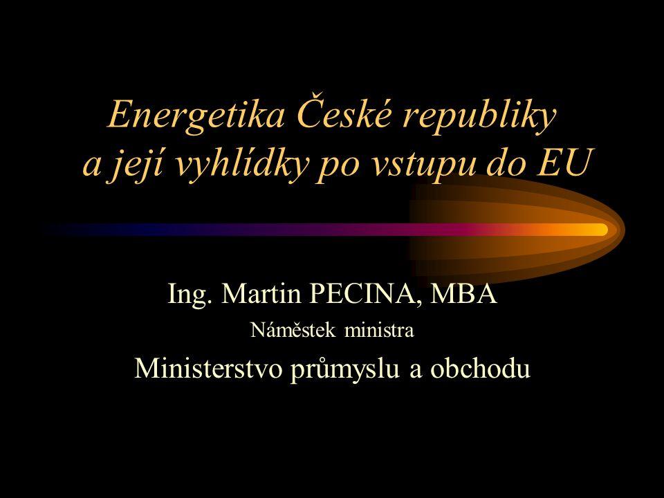 Energetika České republiky a její vyhlídky po vstupu do EU Ing.