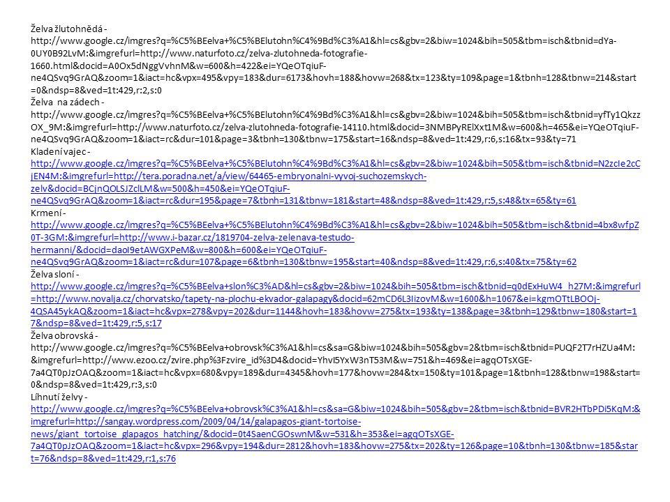 Želva žlutohnědá - http://www.google.cz/imgres?q=%C5%BEelva+%C5%BElutohn%C4%9Bd%C3%A1&hl=cs&gbv=2&biw=1024&bih=505&tbm=isch&tbnid=dYa- 0UY0B92LvM:&img