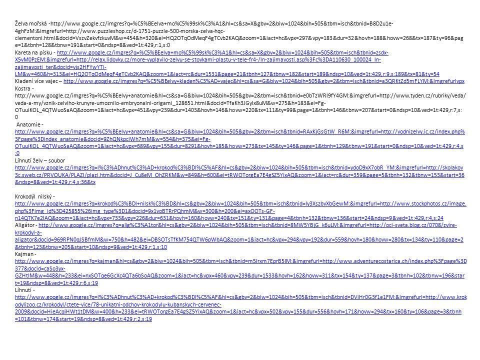 Želva mořská -http://www.google.cz/imgres?q=%C5%BEelva+mo%C5%99sk%C3%A1&hl=cs&sa=X&gbv=2&biw=1024&bih=505&tbm=isch&tbnid=B8D2u1e- 4ghFzM:&imgrefurl=ht
